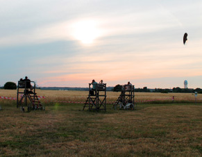 Waiting for the sunset on Tempelhofer Feld